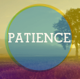 patience_fruitsosp
